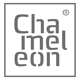 Chameleon Writing